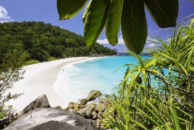 Escape to paradise: The tranquil tropics of the Seychelles